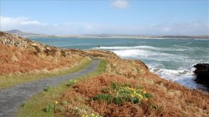7 The Links Dunfanaghy Donegal - Ards Forest park